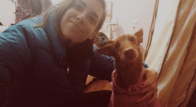 Cuidadora de perros en Sevilla, canguro en Sevilla, España