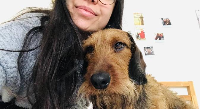 Passeggiate e divertimento in dolce compagnia!, dog sitter a Pisa, PI, Italia