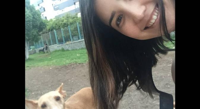 Paseos perrunos con cariño y dedicación, dog sitter in Las Palmas De Gran Canaria
