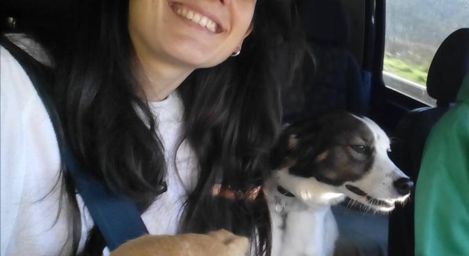 Alojamiento para perros,paseos y visitas a domicil, canguro en Usúrbil