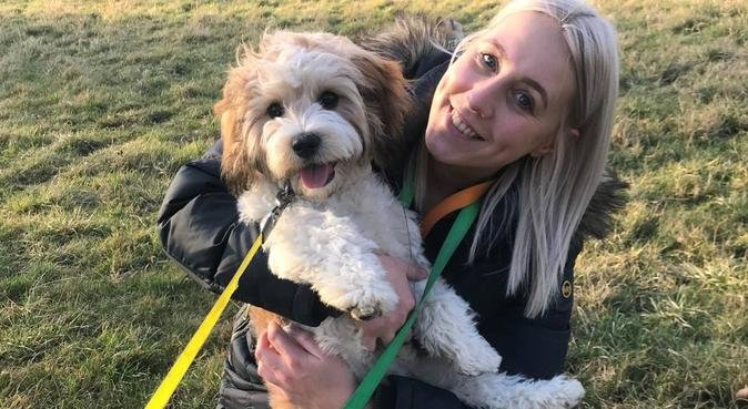 Doggy family in Leeds with lots of love, dog sitter in Leeds