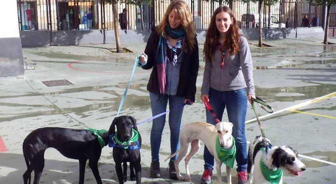 Paseadora de perros joven y activa en Salamanca, canguro en Salamanca