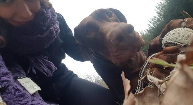 Competenza e attenzione per i vostri amici pelosi!, dog sitter a Riccione, RN, Italia