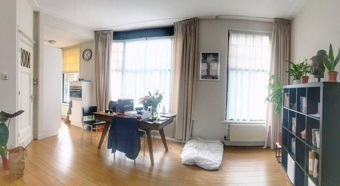 Lovely Dog Boarding and Daycare in Den Haag Center, hondenoppas in The Hague, Netherlands