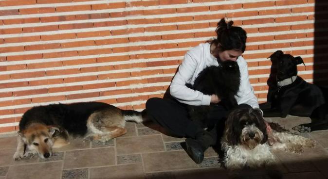 Felicidad Perruna y Gatuna, canguro en Segovia