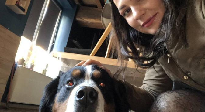 Promenade/garde pour vos 4 pattes d'amour, dog sitter à Châteaugiron, France
