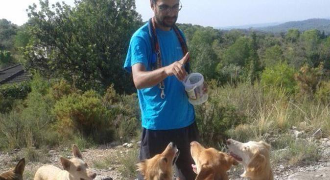Paseador y educador canino/Dog walker and educator, canguro en Llíria