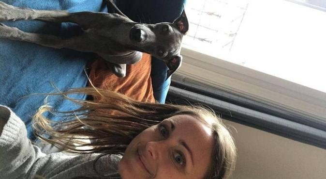 Experienced, reliable pet lover, dog sitter à Courbevoie