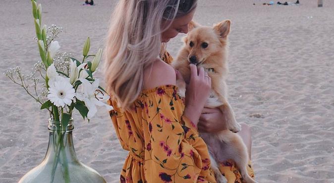 Maa(r)tje voor jouw dier, hondenoppas in Den Haag