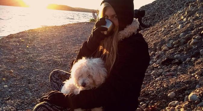 Hundpassning av djurvän i Bromma, hundvakt nära Stockholm