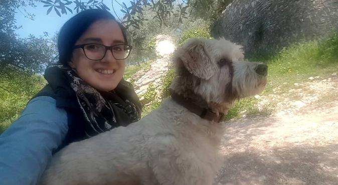 Passeggiate nella natura e tanto divertimento, dog sitter a Verona
