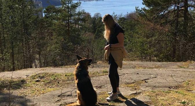 Student og hundeelsker søker 4 beint turvenn, hundepassere i Oslo