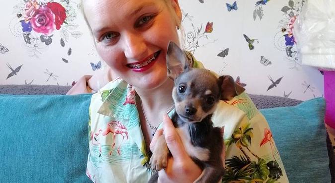 Pawsitively Petsitting services, dog sitter in Stourport - On - Sev
