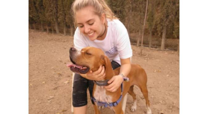 Estudiante de veterinaria con casa acogedora, canguro en Zaragoza, España