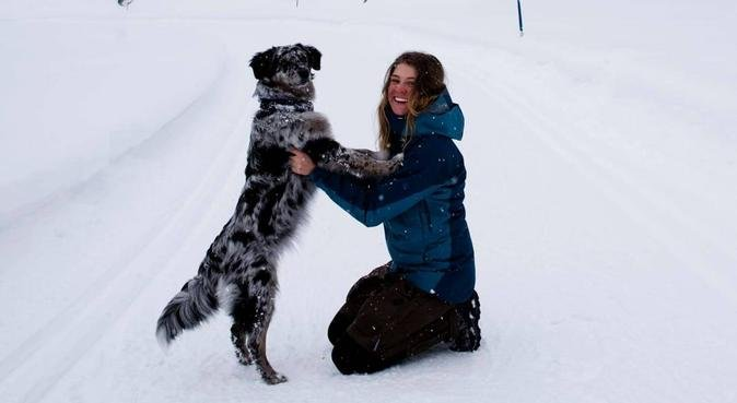 DIN HUNDS DRÖM, i Eriksberg, hundvakt nära Uppsala, Sverige