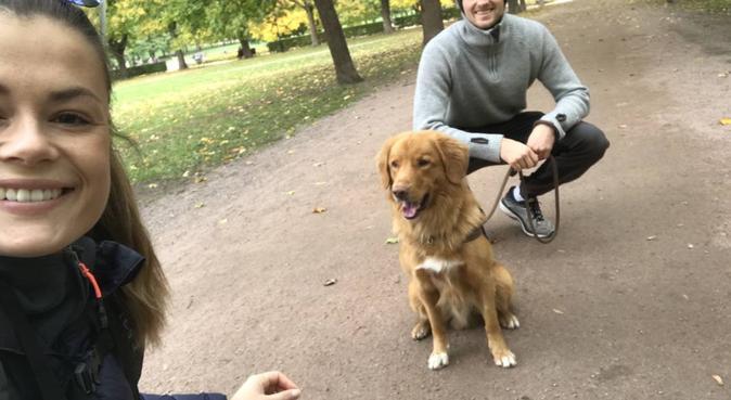 Turglade og hundevant par bosatt ved Sognsvann 😊, hundepassere i Oslo
