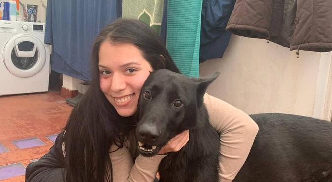 amor y buen cuidado para tu perrito., canguro en A Coruña, España