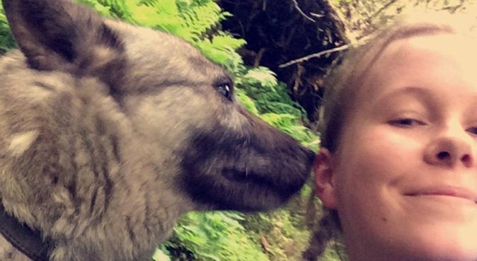Lærerstudent som elsker hunder!, hundepassere i Trondheim, Norge