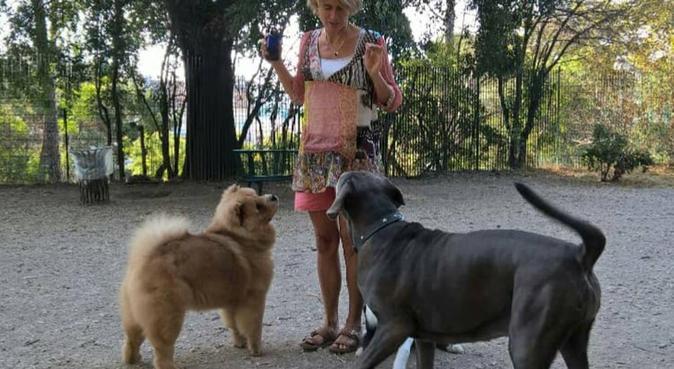 Les canins d'abord! Une professionnelle du chien, dog sitter à Marseille, France