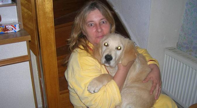 Les  chiens  et chats sont ma passion., dog sitter à VERTOU