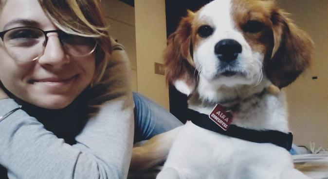 Tanto divertimento ma anche tanta professionalità!, dog sitter a Parma, PR, Italia
