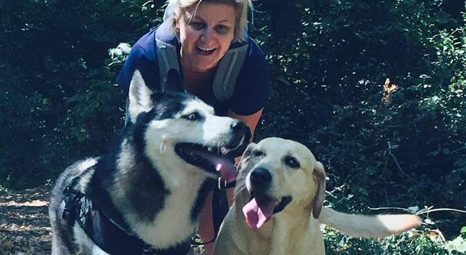 Passeggiate, divertimento e ospitalità!, dog sitter a Ciampino