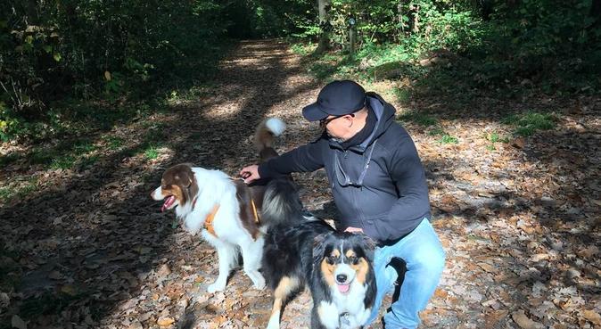 De vraies promenades pour votre chien, dog sitter à Saint-Brice-sous-Forêt