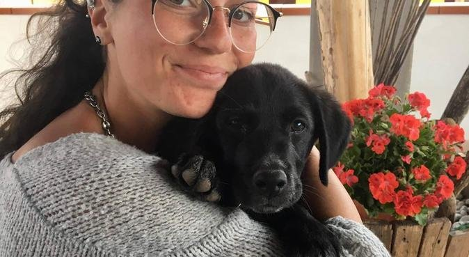 Balade et séjour remplie d'amour (castelnau/mtp), dog sitter à Castelnau-le-Lez, France