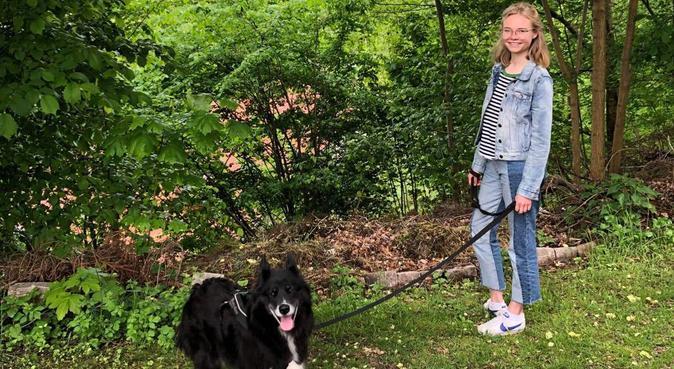 Härlig hundpassning i centrala Göteborg, hundvakt nära Göteborg, Sverige