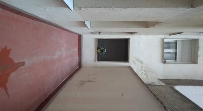 Segundo hogar para tus peludines, canguro en Madrid