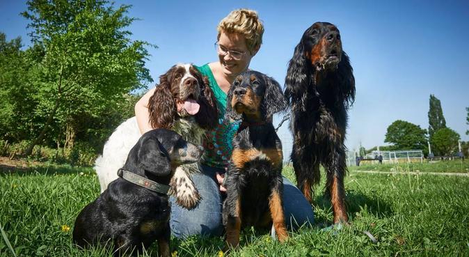 Liebevolle Betreuung in kleiner Gruppe, Hundesitter in düsseldorf