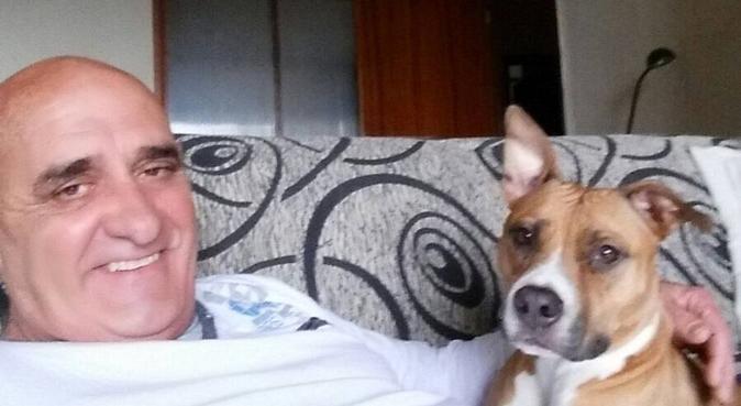 Tu mascota es un miembro más de nuestra familia., canguro en Las Palmas De Gran Canaria