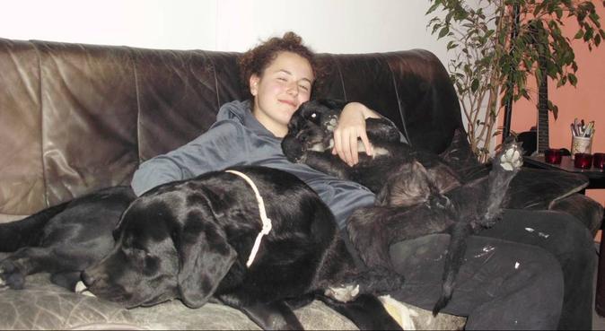 Ariel, dog sitter in Birmingham, UK
