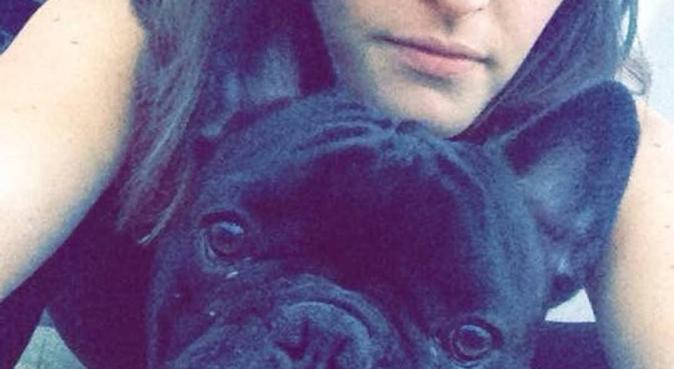 Un endroit paisible pour les loulous ❤️, dog sitter à Toulon, France