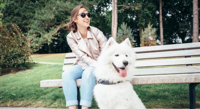 Amoureux des chiens sans chien à Croix !, dog sitter à Croix