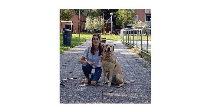 Aria aperta, giochi, coccole: niente noia per noi!, dog sitter a Rimini