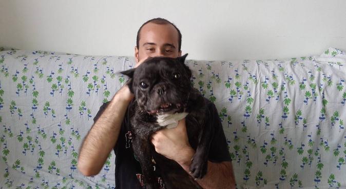 Tante attenzioni per gli amici a quattro zampe., dog sitter a Brescia, BS, Italia