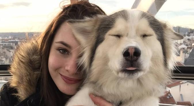 Balades, câlins et beaucoup d'amour !!, dog sitter à Nancy