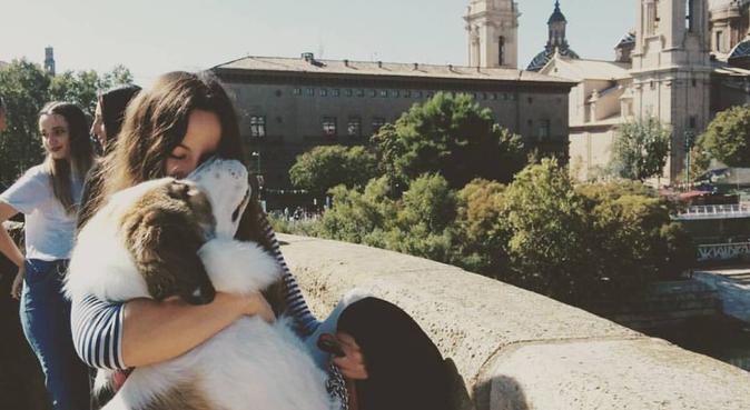 Vacaciones para tu mejor amigo, canguro en zaragoza