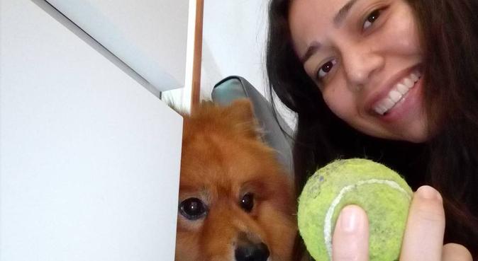 El mejor cuidado para tu mascota 🐶❤, canguro en Madrid