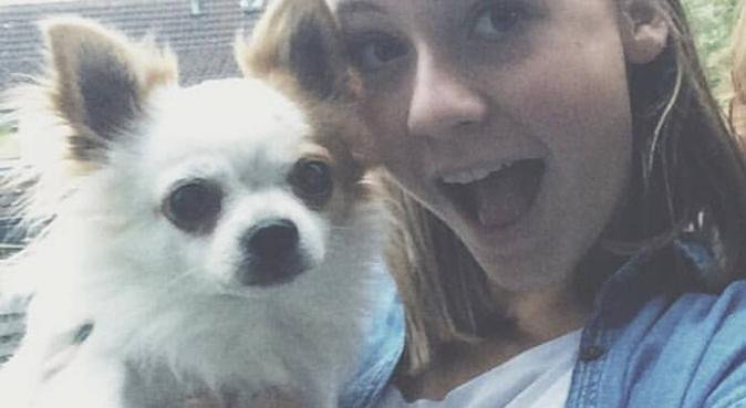 De gezelligste studentenwoning voor viervoeters, hondenoppas in Rotterdam