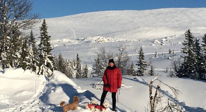 Trygg hundepasser ❤️, hundepassere i Drammen