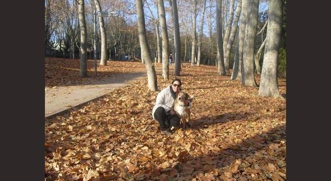 WauWauWau, vull anar a passeig pel Montseny, canguro en sant celoni
