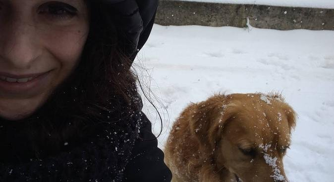 Amore e super divertimento per il vostro cane, dog sitter a Rimini