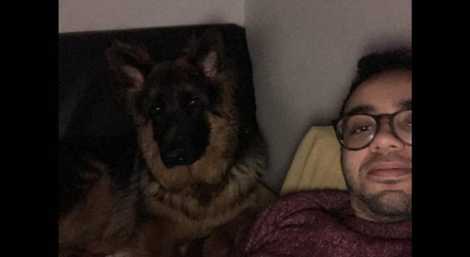 L'homme qui murmure à l'oreille des chiens, dog sitter à Paris