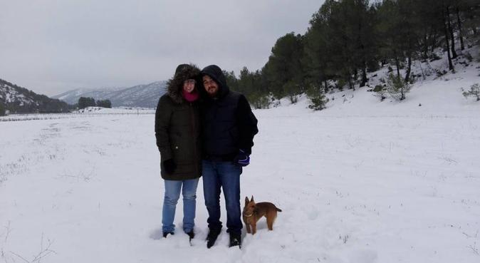 Canguro de mascotas, canguro en Murcia