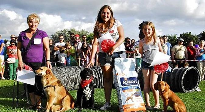 Chica con mucha experiencia cuidando perros, canguro en arteixo