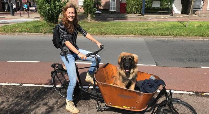 Enthousiast, liefdevol welkom in hondenhof Leiden, hondenoppas in Leiden