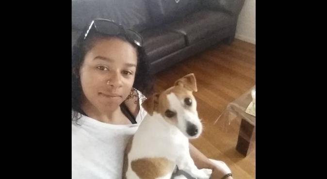 Sarah's Happy-Paws in Derby (Dog walking &Sitting), dog sitter in Derby