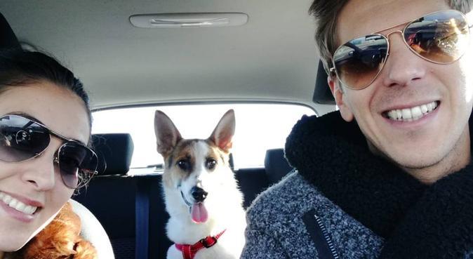 Felicità reciproca, dog sitter a Torino